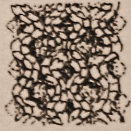 aran-neuleet-hunajakenno