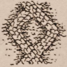 aran-neuleet-timantit