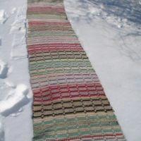 saris9-340_000